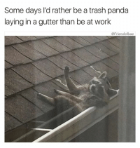 Funny, Trash, and Work: Some days I'd rather be a trash panda  laying in a gutter than be at work  @Friendofbae @yourmomsatonmyface is a legend