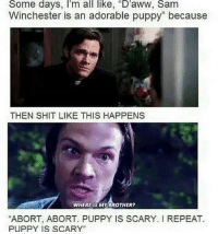 """🐶🐶🐶: Some days, I'm all like, """"D'aww, Sam  Winchester is an adorable puppy"""" because  THEN SHIT LIKE THIS HAPPENS  WHERE IS MY BROTHER?  """"ABORT, ABORT. PUPPY IS SCARY. REPEAT.  PUPPY IS SCARY"""" 🐶🐶🐶"""