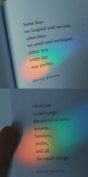 Memes, Rain, and Songs: Some days  we laughed until we cried  other days  we cried until we laughed  either way  every day  was perfect.  perry poetry   I find you  in sad songs  the sound of rain,  sunsets  Sundays,  smiles  and all  the small things.  perry poetry RT @acci_comedy: Some days.. https://t.co/4TPITZA6hw
