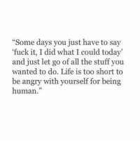 "Life, Memes, and Say It: ""Some days you just have to say  fuck it, I did what I could today'  and just let go of all the stuff you  wanted to do. Life is too short to  be angry with yourself for being  human. Say it...""I am human"". Unless your an alien, which is cool too👍🏼👽 🙌🏼"