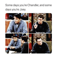 Today, Girl Memes, and Ant: Some days you're Chandler, and some  days you're Joey.  Whot are we doing2  Wasting our lives  ant for lunch i'm chandler today wbu