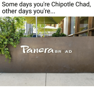 "Chipotle, Reddit, and Panera: Some days you're Chipotle Chad,  other days you're  @freethememez  anerCABR AD The ""E"" fell off the sign at my Local Panera Bread in the whitest way possible"