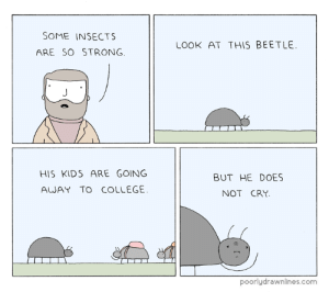 College, Kids, and Strong: SOME INSECTS  ARE SO STRONG  LOOK AT THIS BEETLE  HIS KIDS ARE GOING  AWAY TO COLLEGE  BUT HE DOES  NOT CRY  poorlydrawnlines.com Some Insects Are So Strong