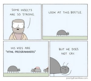 """You have to let them play: SOME INSECTS  LOOK AT THIS BEETLE  ARE SO STRONG  HIS KIDS ARE  BUT HE DOES  """"HTML PROGRAMMERS""""  NOT CRY  poorlydrawnlines.com You have to let them play"""
