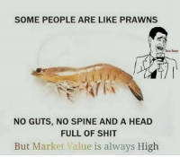 Head, Memes, and Shit: SOME PEOPLE ARE LIKE PRAWNS  NO GUTS, NO SPINE AND A HEAD  FULL OF SHIT  But Market Value is always High