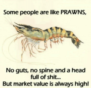 Head, Shit, and Market: Some people are like PRAWNS,  No guts, no spine and a head  full of shit...  But market value is always highl Im sure you guys know of many prawns
