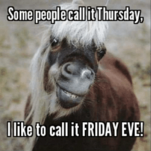 Friday, It's Friday, and Terrible Facebook: Some people call it Thursday,  Ilike to call it FRIDAY EVE! Its Friday eve🐴 🎉