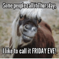 It's Friday, Memes, and 🤖: Some people call itThursday,  I like to call it FRIDAY EVE!