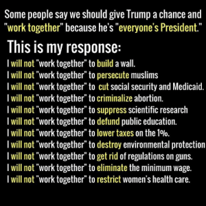 "Guns, Life, and Love: Some people say we should give Trump a chance and  ""work together"" because he's ""everyone's President.""  This is my response:  I will not ""work together"" to build a wall.  I will not ""work together"" to persecute muslims  I will not ""work together"" to cut social security and Medicaid.  I will not ""work together"" to criminalize abortion.  I will not ""work together"" to suppress scientific research  I will not ""work together"" to defund public education.  I will not ""work together"" to lower taxes on the 10%0.  Iwill not ""work together"" to destroy environmental protection  I will not ""work together"" to get rid of regulations on guns.  I will not ""work together"" to eliminate the minimum wage.  I will not ""work together"" to restrict women's health care. robotbisexual:  geekandmisandry:  abszurdisztan:  liberalsarecool:I will not work together. You mean, you will not work together with anyone, who thinks differently than you. And you dare to call yourself a democrat, I guess….Why do you think your worldview is the right one, by the way?  ""I won't work towards oppressing other people's human rights"" ""Omg, people can't even have a different opinion than you"". This isn't Pistachio Ice cream vs Salted Caramel Rory, this is systemic human oppression. This isn't Which Season of Orange Is The New Black Do You Like Most or Which Member Of One Direction Is The Cutest, it is the lives and deaths of innocent people and being on the one that chooses to think of ALL human life as valuable may not be the ""right worldview"" to you. But many of us will choose our fellow humans every day rather than the erratic whims of a fascist cheetoh who has no idea what he is doing and literally tweets national security information from a personal Twitter account. Resist.  I love when we say ""I value human life and human rights over an orange windbag getting the right to hold power and discriminate at will against those people's lives that he does not value"" and they go ""but what makes your opinion right tho"""