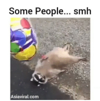 Memes, Smh, and Tbt: Some People  smh  Asiaviral.com Would you like to advertise your business, your talent, a funny video or something else on my page? 🆗🆒🆕DM me for very cheap rates.😎😎😎See great results💯💯💯 ❤❤SHOUT OUT Sunday SALE 🌏🌎PayPal only💰💰💰✔✔✔ Go subscribe to my YouTube @mutebitch2😎😎😎 🚘FREE £10 FOOD 🚘FREE £10 FOOD 🚘FREE 🆕🆕🆕🆕🆕CentralDish CentralDish Centraldish £10 OFF your first takeaway order GO TO: Centraldish.com-signup and add the reward code MICH6703 at the checkout page. FREE RIDE 🚘 FREE RIDE🚘 FREE RIDE Need a taxi? Have you tried Uber? Use my promo code MUTEDOG2 for your first ride on me❤❤❤ Click the link in my bio😎 🚘FREE🚘FREE 🚘FREE 🚘FREE🚘 🆕GETT GETT GETTAXI 🚕🚕🆓🆓 Use my code GTESXCT for £5 off your first taxi ride.🆒 Get the app: http:-invitev-uk.gett.com-code-GTESXCT🚕🚕 🚘FREE🚘FREE 🚘FREE 🚘FREE🚘 mutebitch2 uber GETT cabs food 2017 instagramstories love tbt repost cute me instagood followme summer instadaily happy photooftheday me like4like friends selfie girl fun art tags4likes smile follow mutebitch3