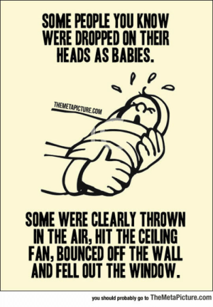 Tumblr, Blog, and Air: SOME PEOPLE YOU KNOW  WERE DROPPED ON THEIR  HEADS AS BABIES.  THEMETAPICTURE.COM  SOME WERE CLEARLY THROWN  IN THE AIR, HIT THE CEILING  FAN, BOUNCED OFF THE WALL  AND FELL OUT THE WINDOW.  you should probably go to TheMetaPicture.com awesomesthesia:  I Know Some People Who Went Through This