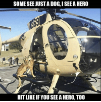 Friends, Memes, and Link: SOME SEE JUST A DOG, I SEE A HERO  HIT LIKE IFYOU SEE A HERO, TOO - ❎ DOUBLE TAP pic 🚹 TAG your friends 🆘 DM your Pics-Vids 📡 Check My IG Stories 💥Check the link in Bio 👉@veterancollection 🔥Follow us @veterancollection - 🇺🇸🇺🇸🇺🇸🇺🇸🇺🇸🇺🇸🇺🇸🇺🇸 - usarmy armylife usnavyseal navylife militarylife militarylove usmilitaryacademy navylife usmilitary usarmyveteran veterans supportthetroops supportourveterans usnavy USMC USCG usmarines armedforces semperfi usairforcepride usairforce hooah Oorah armystrong infantry activeduty supportourtroops usarmedforces