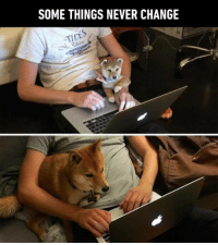 Wow, such episode. https://9gag.com/gag/a9r4Ldo?ref=fbpic: SOME THINGS NEVER CHANGE  TIDE Wow, such episode. https://9gag.com/gag/a9r4Ldo?ref=fbpic