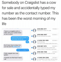Craigslist, Life, and The Worst: Somebody on Craigslist has a cow  for sale and accidentally typed my  number as the contact number. This  has been the worst morning of my  life  (434) 960-3171  Interested in heifer for sale  7:42 AM  There is a craigslist ad for a  heifer wth your number listed  as text contact.  (434) 906-2657  Do you still have the heifer  6:38AM >  I don't know what a heifer is  and show me the as  6:34 AM  +1 (434) 760-1303  Good morning.  I can pick up the black heifer this morn..  Ad  Don't know how to show it to  you but post #6239063474  (434) 987-1274  I have a black bull who is blind and  needs a friend i would like to get your...  6:24 AM  What is a heifer???  80 380,7209  (540) 395-7266  Do you still have the heffer for sale  5:47AM  Cville craigslist farm and  garden  A female cow that hasn't had a  calf  +1 (540) 294-2289  Im interested in the heifer calf you have  2:55 AM> Wau