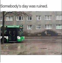 Funny, Lol, and Doubt: Somebody's day was ruined Lol no doubt