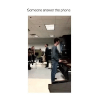Lol, Phone, and Answer the Phone: Someone answer the phone Lol