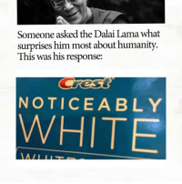 Dalai Lama, White, and Humanity: Someone asked the Dalai Lama what  surprises him most about humanity.  This was his response:  NOTICEABLY  WHITE https://t.co/u9TO6JkxBL