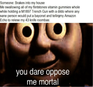 You dare oppose me mortal: Someone: Brakes into my house  Me swallowing all of my flintstones vitamin gummies whole  while holding a M1897 Trench Gun with a dildo where any  sane person would put a bayonet and tellirgmy Amazon  Echo to relese my 43 knife roombas:  you dare oppose  me mortal You dare oppose me mortal