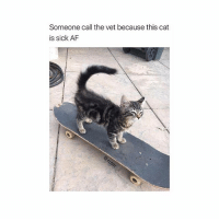 Af, Memes, and Sick: Someone call the vet because this cat  is sick AF What a purrrfect pun 😹