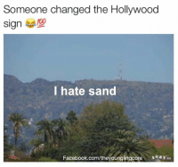 I Hate Sand: Someone changed the Hollywood  Sign  I hate sand  Facebook.com/theyounglingcore  SURF  co