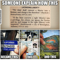 "Facebook, Memes, and News: SOMEONE EXPLAIN HOW THIS  LICENSING LIBERTY  ""No state shall convert a liberty into a  license, and charge a fee therefore."" (Murdock v.  Pennsylvania, 319 U.S. 105)  If the State converts a right (liberty) into  a privilege, the citizen can ignore the license  and fee and engage in the right (liberty) with  impunity"" (Shuttlesworth v. City of Birmingham,  Alabama, 373 U.S. 262)  DOG LICENSE tr- 20-  CALIFORNIA  ID: 453 5646 55 543  Pooch T. Dog  Environment  21de Drive, 4L  rke  AGE- 3 yrs  EYES- Br FUR-short  HT. 15  NOSE-blk EARS oppy  BICYCLE LICENS  Non-migratory trout and coarse licence  WT- 19 1bs  BECAME THIS, THISAND THIS 💭 Can someone explain this? 💭🤔🤔🤔💭 Join Us: @TheFreeThoughtProject 💭 TheFreeThoughtProject 💭 LIKE our Facebook page & Visit our website for more News and Information. Link in Bio... 💭 www.TheFreeThoughtProject.com"
