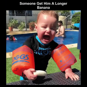 Funny, Memes, and Videos: Someone Get Him A Longer  Banana RT @StumblerFunny: For more funny videos follow @StumblerFunny or visit https://t.co/wXxwph26cH https://t.co/qP45NInwMF