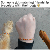 Well this is just a great idea. literallythatsyou congratulationsyoureadogperson 🙌🐶 @mister_griff: Someone got matching friendship  bracelets with their dogs Well this is just a great idea. literallythatsyou congratulationsyoureadogperson 🙌🐶 @mister_griff
