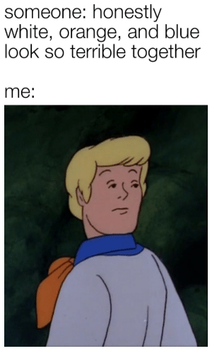 Memes, Tumblr, and Best: someone: honestly  white, orange, and blue  look so terrible together  me: More of the best memes at http://mountainmemes.tumblr.com