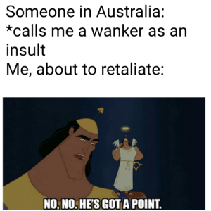 True, Australia, and Dank Memes: Someone in Australia:  *calls me a wanker as an  insult  Me, about to retaliate:  NO, NO. HE'S GOT A POINT. It's true