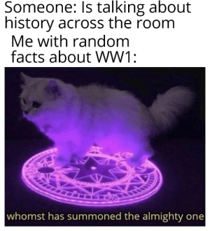 Did you know that 32 countries participated in WW1?: Someone: Is talking about  history across the room  Me with random  facts about WW1:  whomst has summoned the almighty one Did you know that 32 countries participated in WW1?
