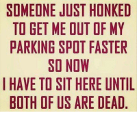 honk: SOMEONE JUST HONKED  TO GET ME OUT OF MY  PARKING SPOT FASTER  SO NOW  I HAVE TO SIT HERE UNTIL  BOTH OF US ARE DEAD