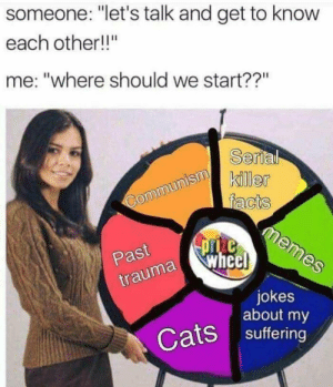 """Cats, Dank, and Memes: someone: """"let's talk and get to know  each other!!""""  me: """"where should we start??""""  Serla  ker  Past  trauma  a wheel  jokes  about my  Cats suffering meirl by ethan817 MORE MEMES"""