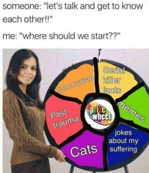 "Meirl: someone: ""let's talk and get to know  each other!!""  me: ""where should we start??""  Serl  killer  Past  uma whe  jokes  about my  Cats suffering Meirl"