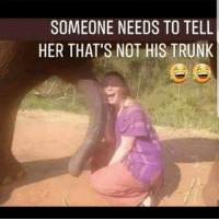 IM NOT ABOUT TO GET IN THAT MAN BUSINESS 🤷🏾♂️🤷🏾♂️🤷🏾♂️😂😂😂😂😂 takecareofyachirren freenate @darealnatemandela: SOMEONE NEEDS TO TELL  HER THAT'S NOT HIS TRUNK IM NOT ABOUT TO GET IN THAT MAN BUSINESS 🤷🏾♂️🤷🏾♂️🤷🏾♂️😂😂😂😂😂 takecareofyachirren freenate @darealnatemandela