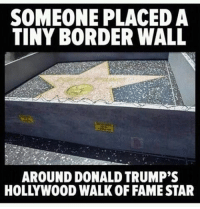 How big are the handprints though?: SOMEONE PLACED A  TINY BORDER WALL  AROUND DONALD TRUMP'S  HOLLYWOOD WALK OF FAME STAR How big are the handprints though?