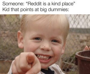 """Adventure is out there: Someone: """"Reddit is a kind place""""  Kid that points at big dummies: Adventure is out there"""