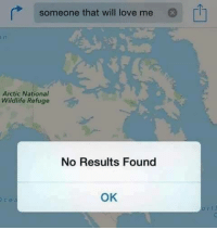 Love, Memes, and 🤖: someone that will love me  Arctic National  Wildlife Refuge  No Results Found  OK  ce