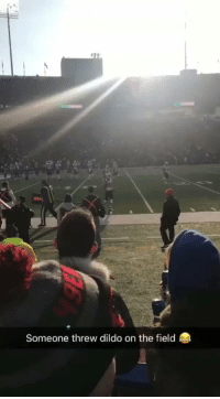 Dildo, Football, and Nfl: Someone threw dildo on the field Someone tell Tom Brady he dropped his mouthpiece   https://t.co/RcMXxuRebx