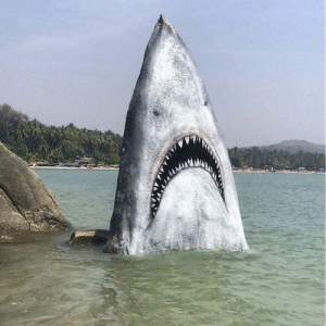Shark, Guess, and Paint: Someone took the time to paint this rock to look like a shark. Props to them I guess