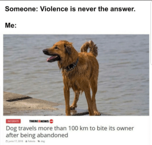 Australian Bottom Text: Someone: Violence is never the answer.  Me:  INCIDENTS  THEREISNEWS  Dog travels more than 100 km to bite its owner  after being abandoned  G junio 17, 2018  Fabiola dog Australian Bottom Text