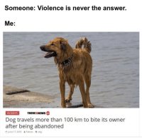 Anaconda, Memes, and Good: Someone: Violence is never the answer.  Me:  THEREISNEws  INCIDENTS  cotm  Dog travels more than 100 km to bite its owner  after being abandoned  G junio 17, 2018  Fabiola dog Good doggo via /r/memes http://bit.ly/2TDFpSO