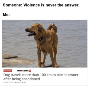 Anaconda, Dank, and Memes: Someone: Violence is never the answer.  Me:  THEREISNEws  INCIDENTS  cotm  Dog travels more than 100 km to bite its owner  after being abandoned  G junio 17, 2018  Fabiola dog Good doggo by SpruceMilk206 MORE MEMES