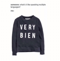 Memes, French, and 🤖: someone: what's it like speaking multiple  languages?  me  VERY  BIEN I'm gonna find this sweater one day I don't even speak French - mon textpost textposts