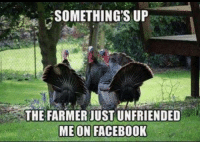 Happy Thanksgiving Everyone! Have a great one! - from the MCS team: SOMETHING SUP  THE FARMER JUST UNFRIENDED  ME ON FACEBOOK Happy Thanksgiving Everyone! Have a great one! - from the MCS team