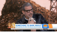 """sheholdsyoucaptivated:  potterheadqueenie: THE PUPPY FELL ASLEEP 😭   : SOMETHING TO BARK ABOUT  JEFF GOLDBLUM JOINS THE PACK IN """"ISLE OF D  OGS TODAY sheholdsyoucaptivated:  potterheadqueenie: THE PUPPY FELL ASLEEP 😭"""