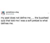 Buzzfeed, Define, and Quiz: sometimes a dog  CosmicWuffy  my past does not define me..... the buzzfeed  quiz that told me I was a soft pretzel is what  defines me.