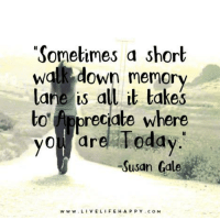 """Appreciate the journey: """"Sometimes a short  walk down memory  lane is all it takes  to Appreciate where  you are Today  Susan Gale  w w w L  VE LIFE HA P P Y C o M Appreciate the journey"""