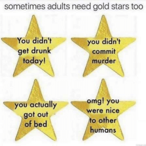 A toast to all adults: sometimes adults need gold stars too  You didn't  you didn't  get drunk  today!  commit  murder  omg! you  you actually  got out  of bed  were nice  to other  humans A toast to all adults