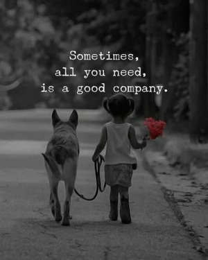 All You Need Is: Sometimes,  all you need,  is a good company
