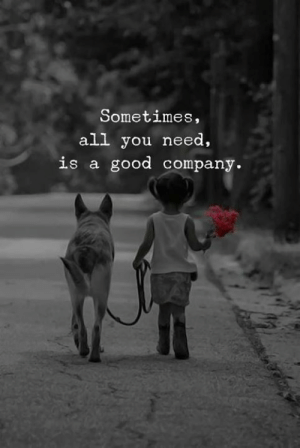 Good, Company, and All: Sometimes,  all you need,  is a good company.